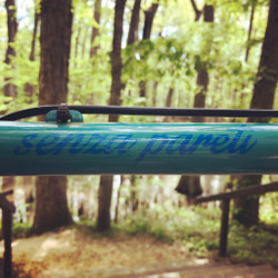 details from Mary's bicycle - Forgione bike