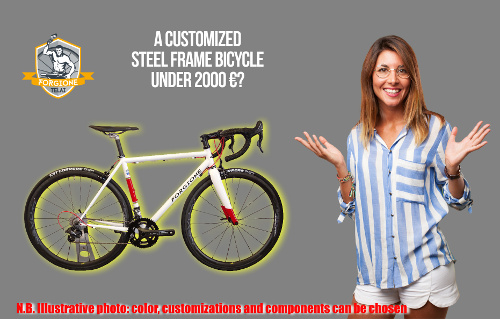 Complete custom bicycle with steel frame for less than 2000 euros