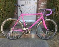 La bici da corsa (rosa) di Dan